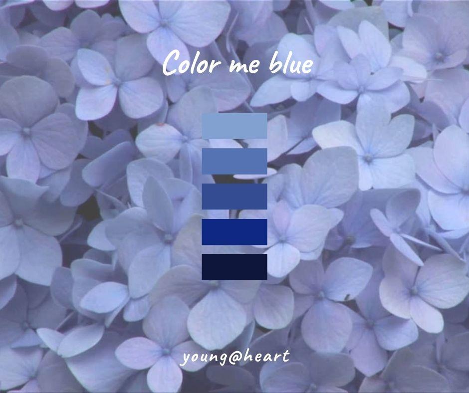 farbe blau